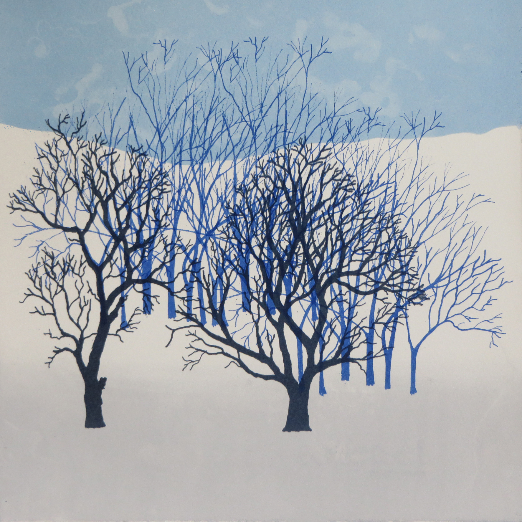 Rona MacLean. Screen Print. Winter Cop