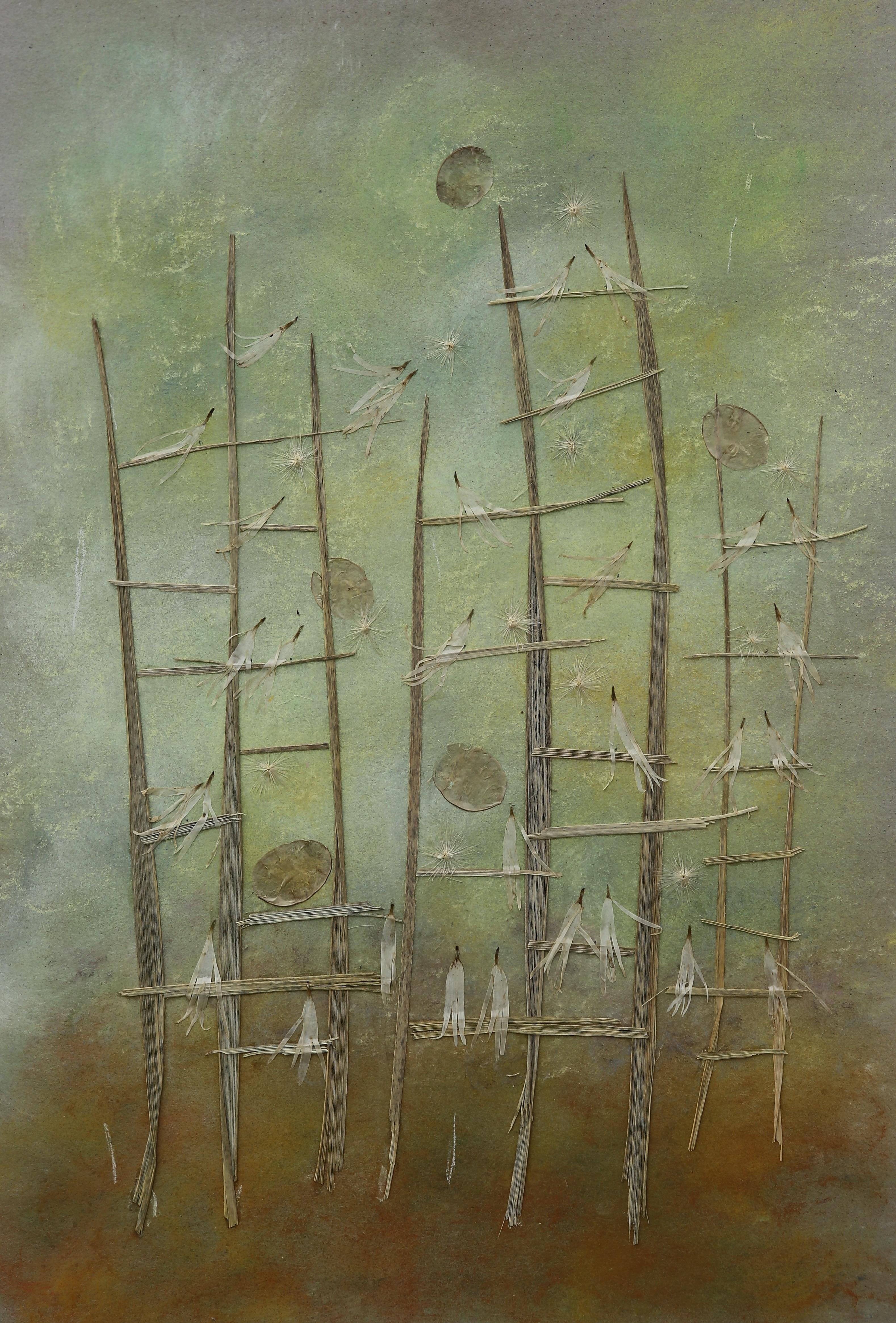 Birch Tree Gallery. Laima Dzigaite. Morning Allegro (photo D. Vytas)