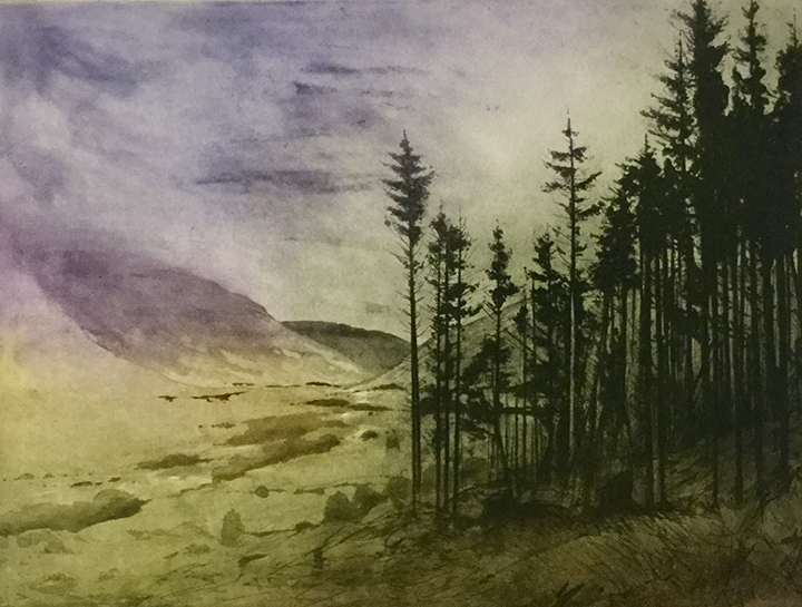 Greogry Moore - Edge of the Glen (etching)