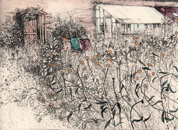 Pamela Grace - September in the Walled Garden solar plate etching 27x19.9cm