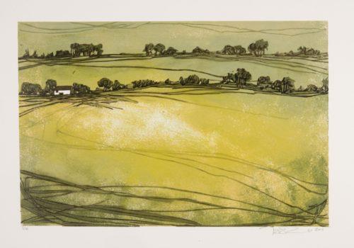 Croft and Three Fields (linocut, 300 x 200)