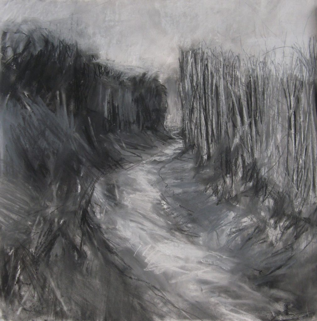 Meander-Janine-Baldwin-pastel-charcoal-and-graphite-52-x-52cm