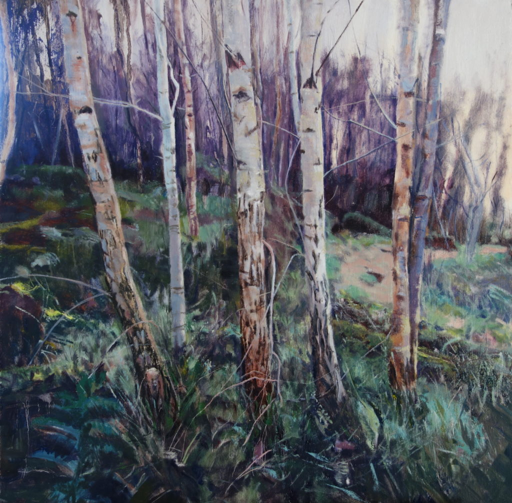 Kevin Heffernan. 'Birches in Pressmennan Wood'