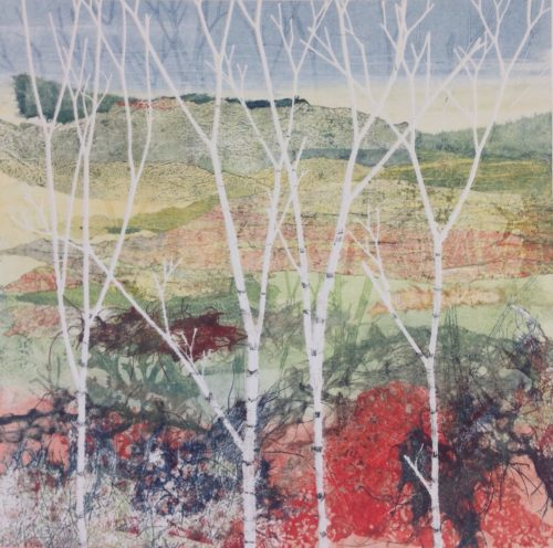 Adele Burdon. Birches III