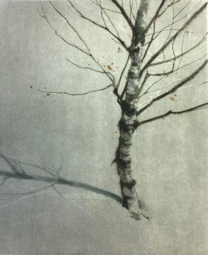 Gregory Moore. Winter Birch