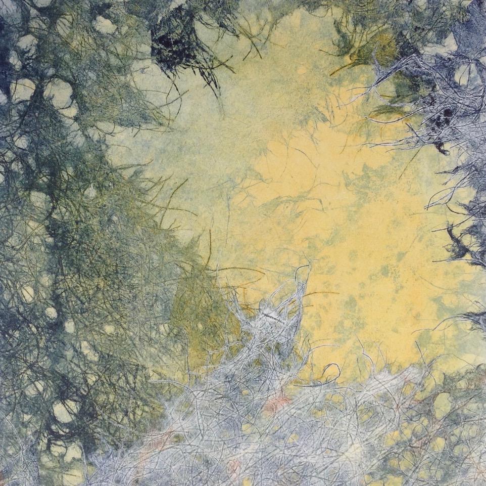 Adele Burdon. Into the Light 25 x 25 cm
