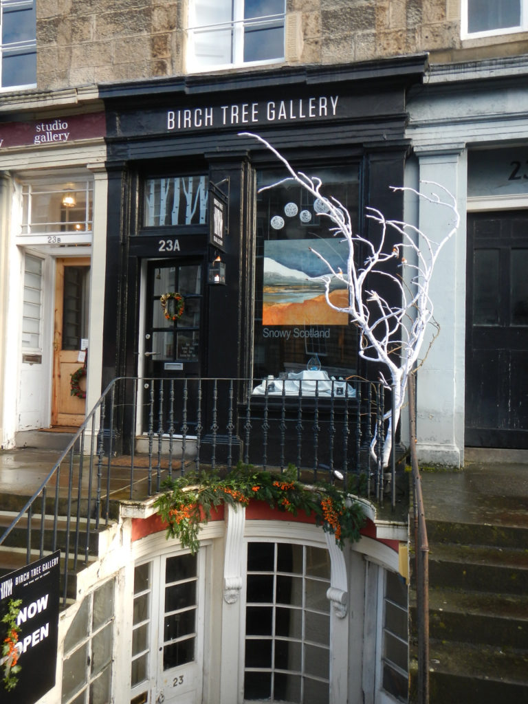 Birch Tree Gallery with white birch tree 2020 December