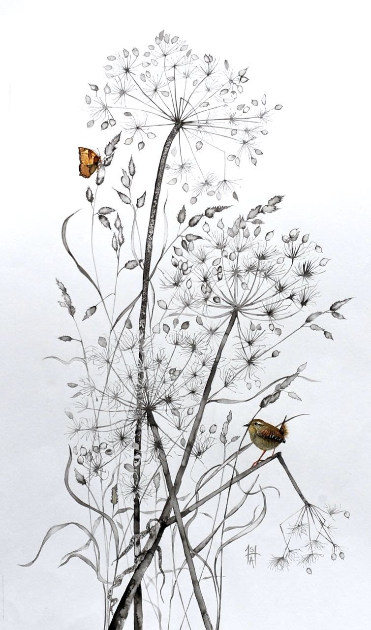 SAH-Perching Wren, ink & watercolour on paper U/F image H60xW35cm