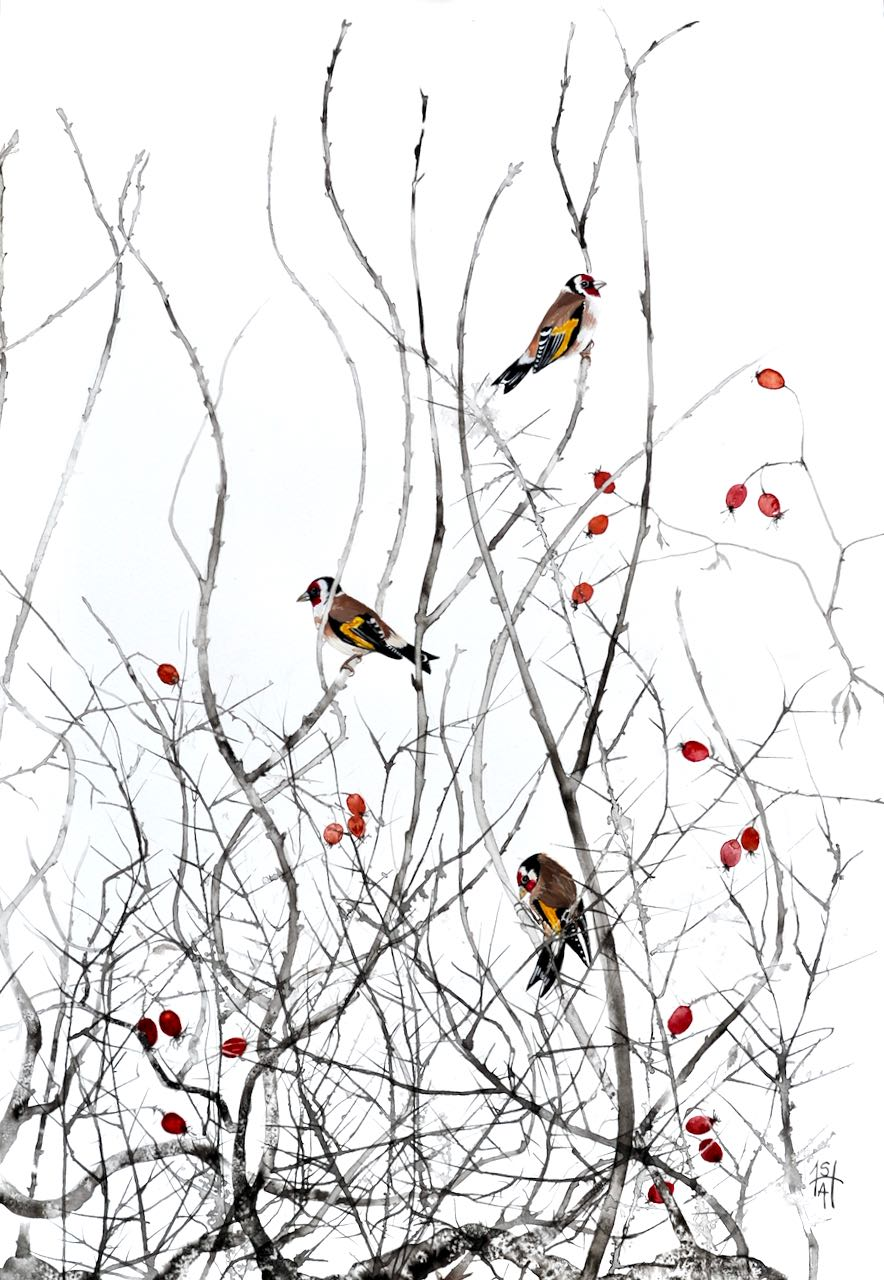 Sheila Anderson-Hardy-Goldfinches and Rose-hips ink7 watercolour on paper framed H75xW58cm