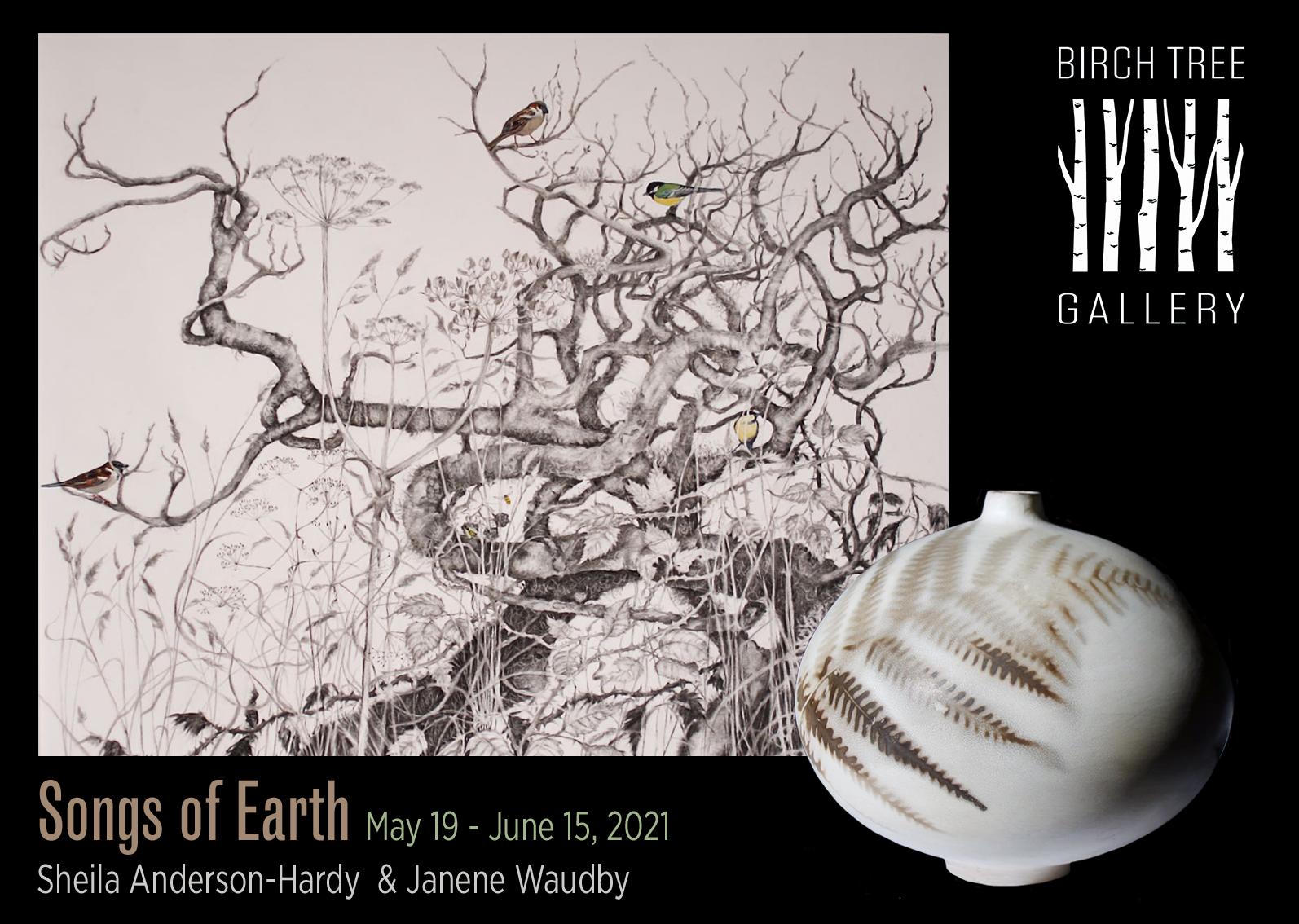 Birch Tree Gallery - Songs of Earth
