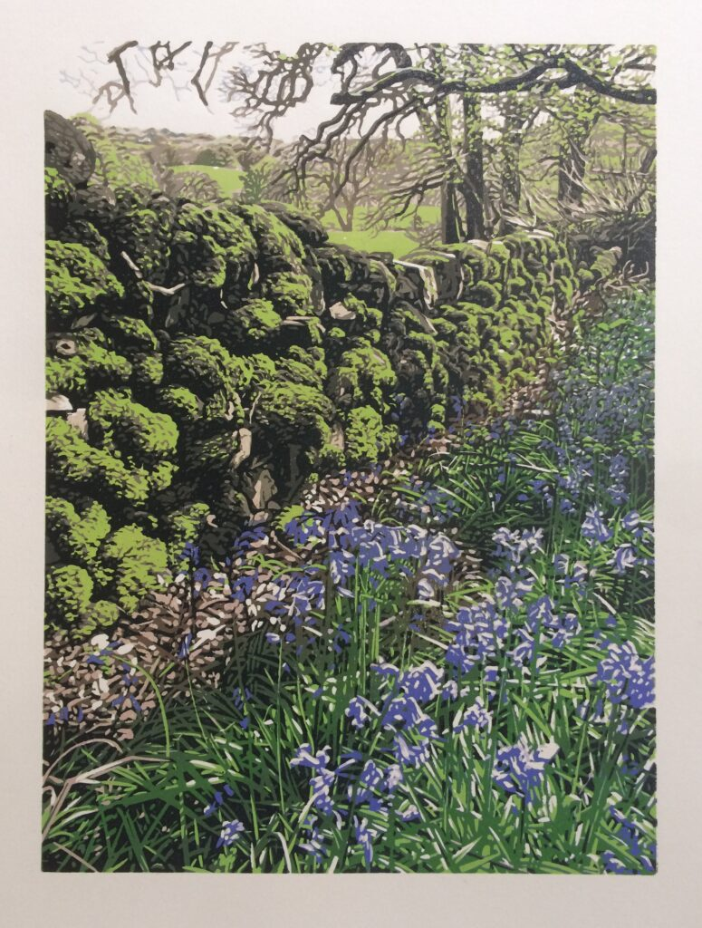 Reduction linocut print of Moss on stone wall in Scotland and bluebells