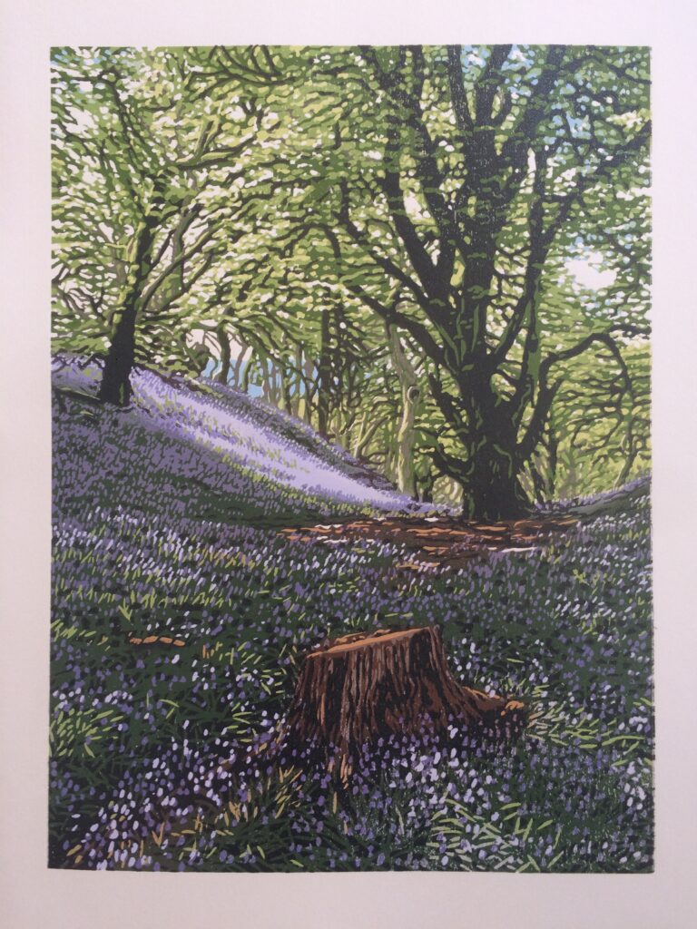 Reduction linocut print of bluebells in the forest in Scotland.