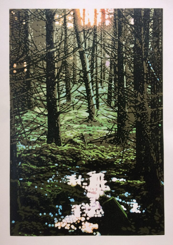 JOshua Miles Reduction linocut print of the evergreen forest in Scotland in a low light