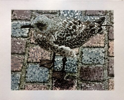 Joshua Miles reduciton linocut of herring gull chick on cobbles